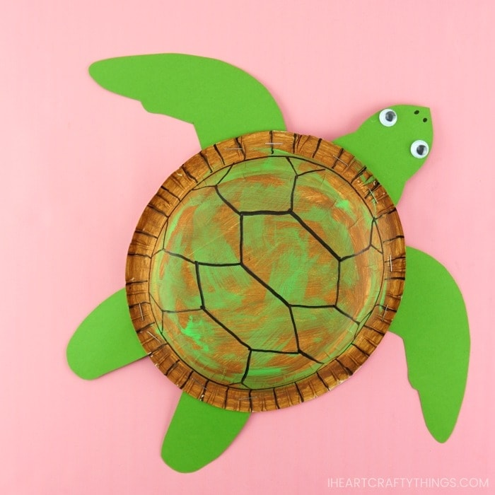 sea turtle craft made out of a paper bowl sitting on a pink background