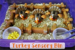 Thanksgiving Turkey Sensory Bin (Invitation to Play)