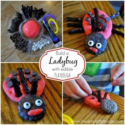 Ladybug Playdough