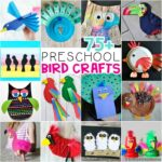 75+ Bird Crafts for Preschoolers -Ultimate list of birds activities for kids of all ages. Common birds, tropical birds, peacocks, owls, penguins and more.