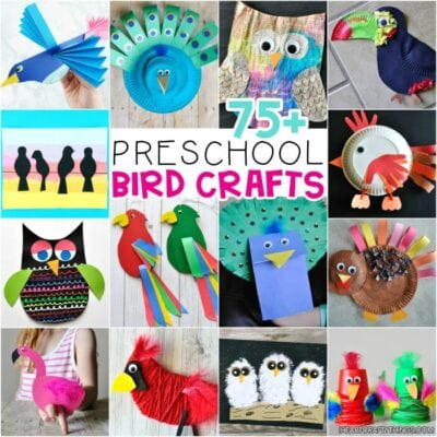 75+ Awesome Bird Crafts for Preschoolers -The Ultimate Resource!