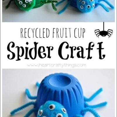 Recycled Fruit Cup Spider Craft