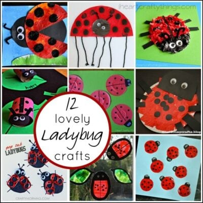 12 Lovely Ladybug Crafts for Kids
