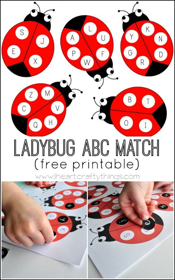 Ladybug Alphabet Match Activity With Free Printable I