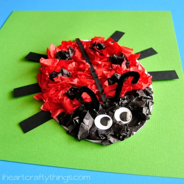 How To Make Ladybird Craft