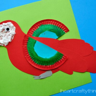 How to Make a Colorful Macaw Craft for Kids (with free pattern)