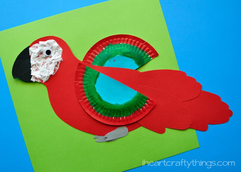 How to make a colorful macaw craft for kids with free for Art and craft books for kids