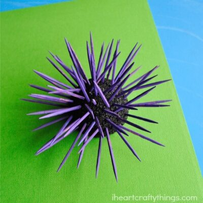 Sea Urchin Kids Craft