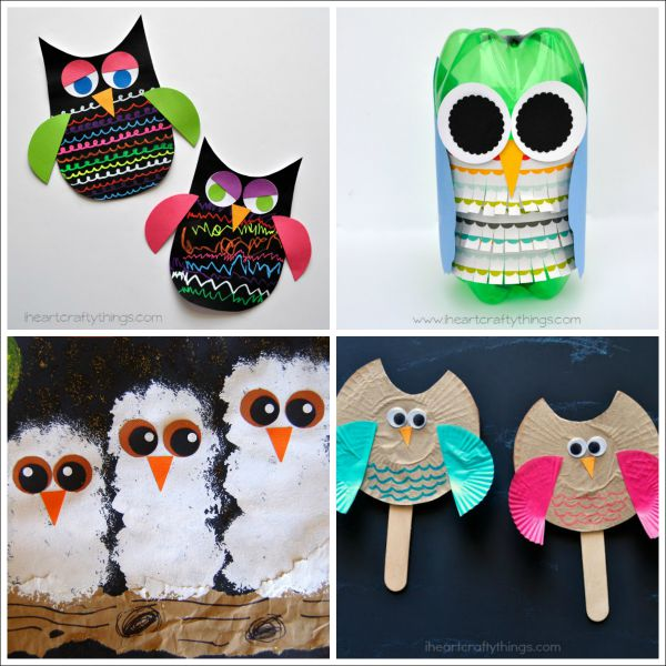8 owl crafts for kids - Owl Pictures For Kids