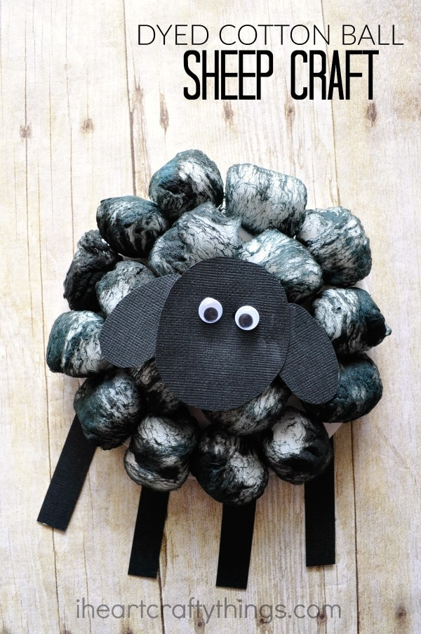 "Vertical image of black sheep craft with the words ""Dyed Cotton Ball Sheep Craft"" in top right corner."