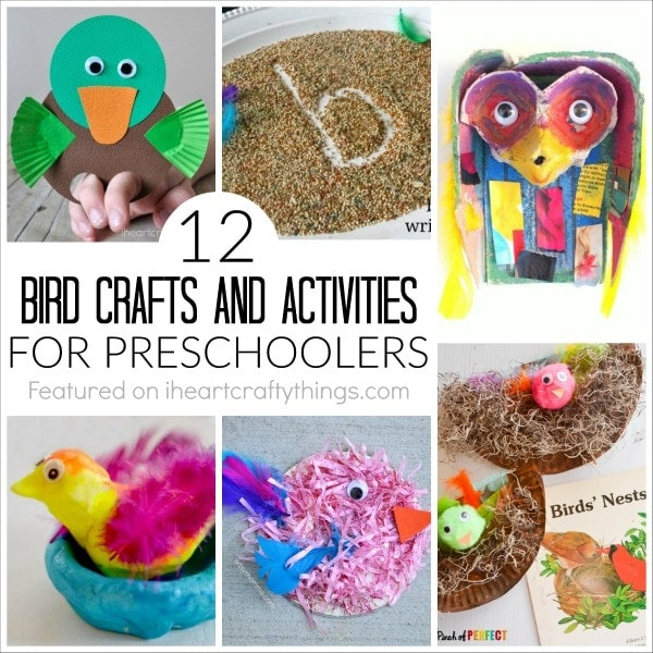 12 Bird Crafts and Activities for Preschoolers | I Heart Crafty Things