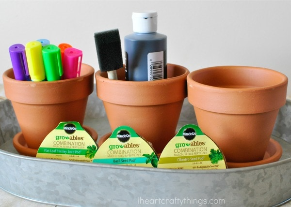 supplies you will need for children's herb garden