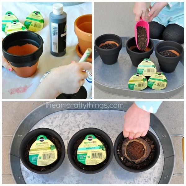 Steps to making your children's herb garden