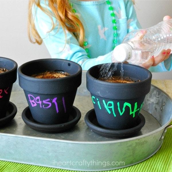 Watering your children's herb garden