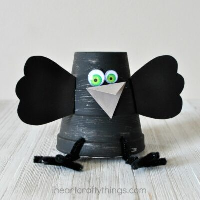 Super Cute Foam Cup Crow Craft