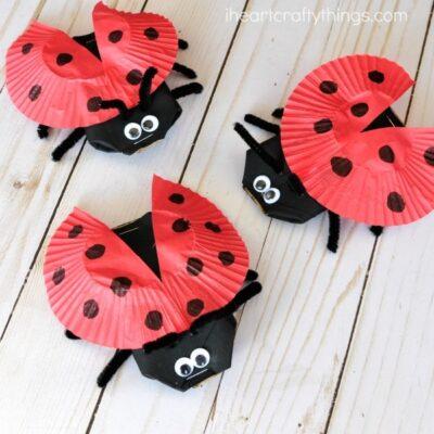 Cardboard Tube Ladybug Craft