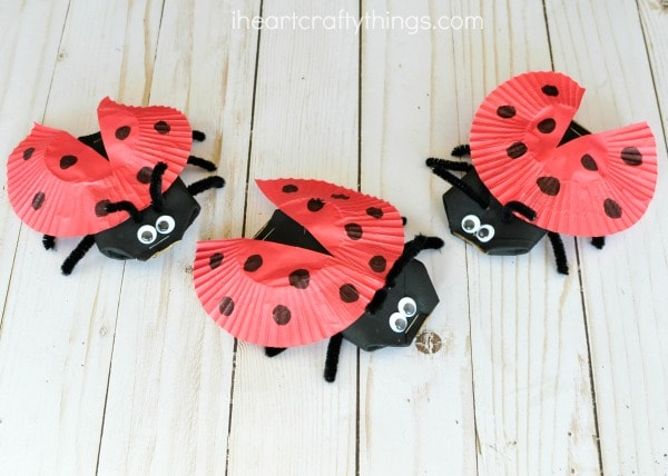 Image result for ladybug craft