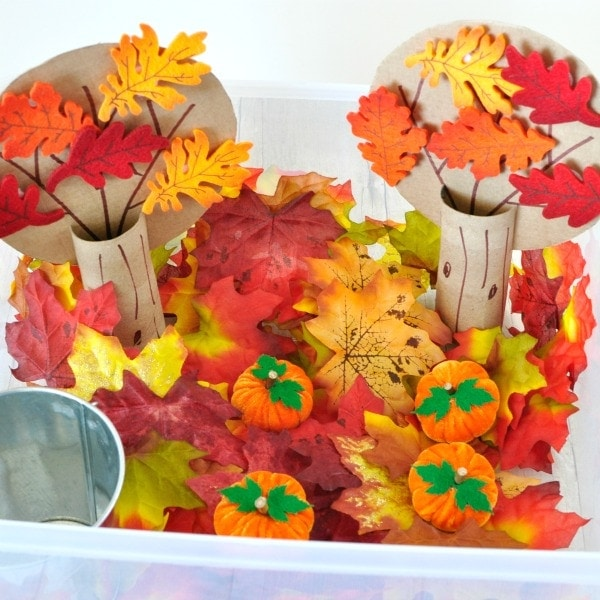Explore and learn about the fall season with this beautiful fall sensory bin. Fun toddler learning activities, counting, colors and fine motor skills.