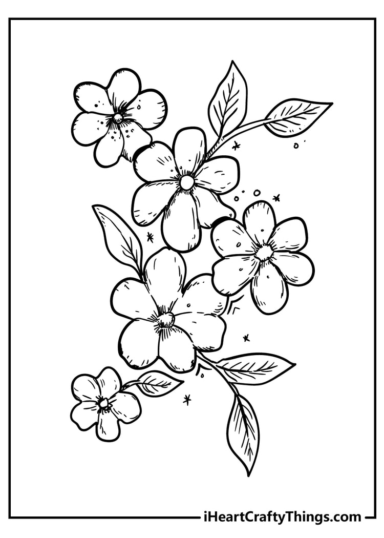 New Beautiful Flower Coloring Pages   18 Unique 18
