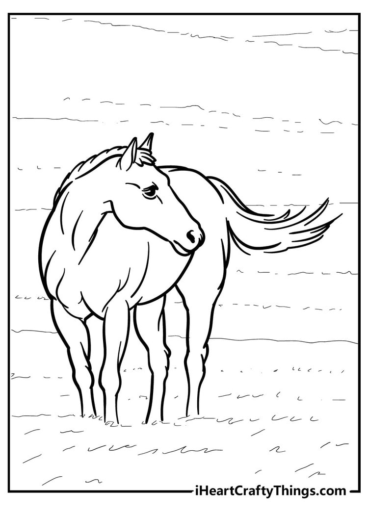 Horse_18