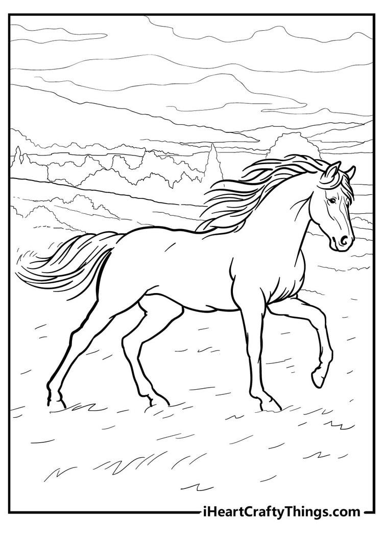 Horse_19