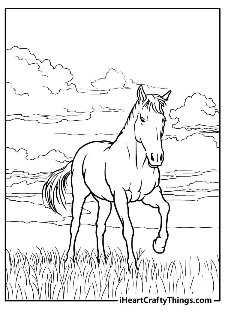 Horse_20