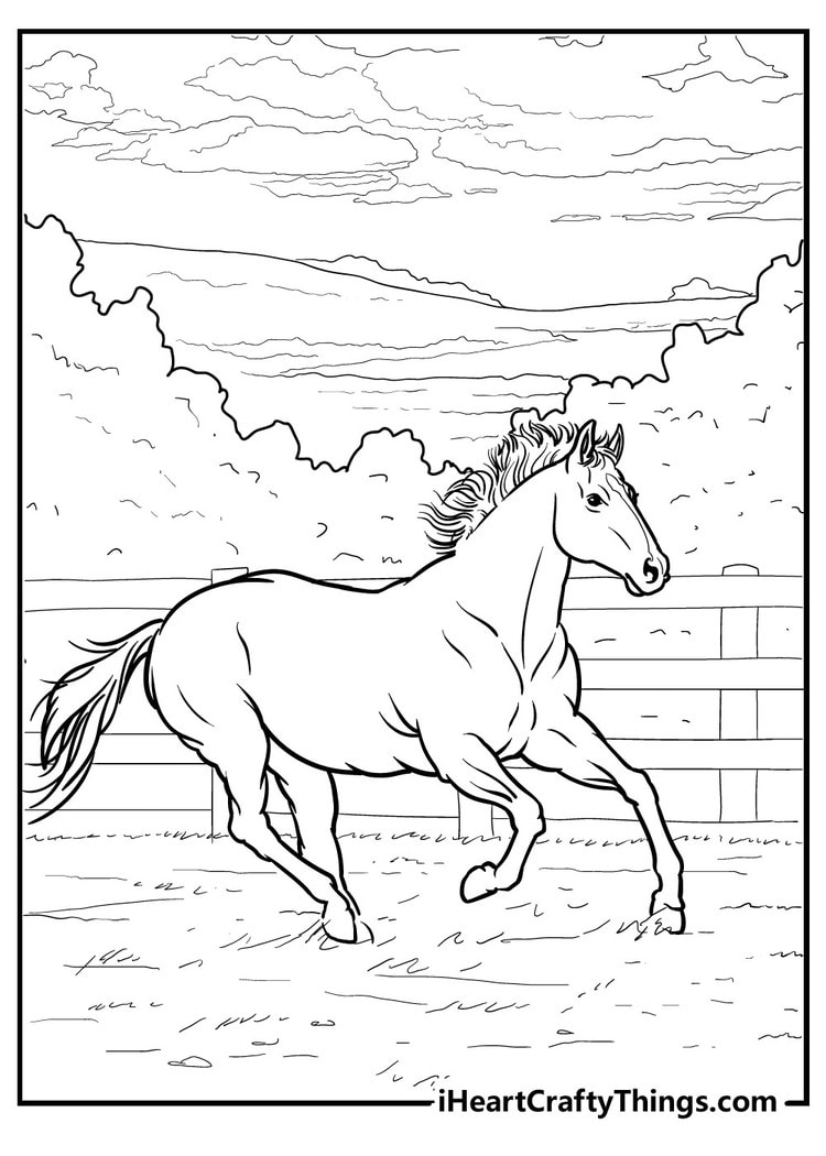 Horse_22