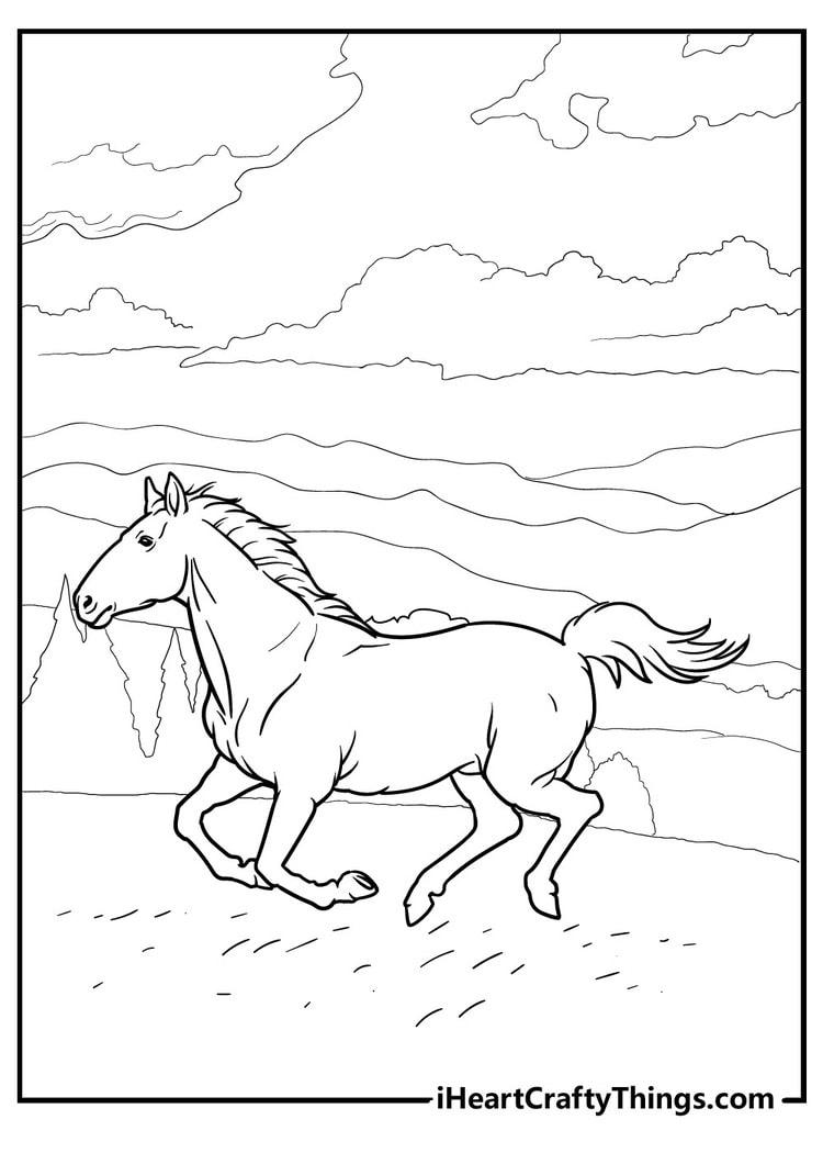 Horse_25