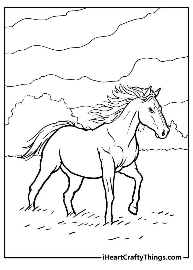 Horse_26