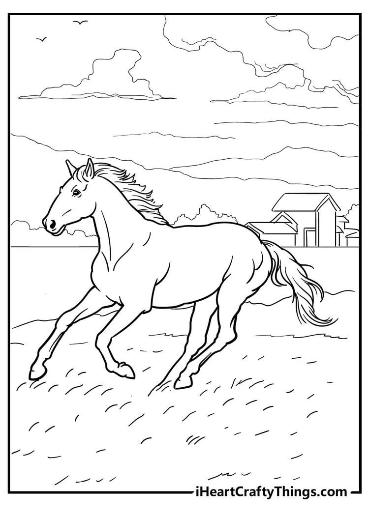 Horse_29
