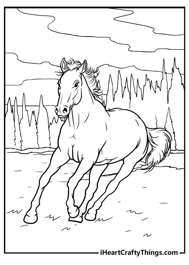 Horse_8