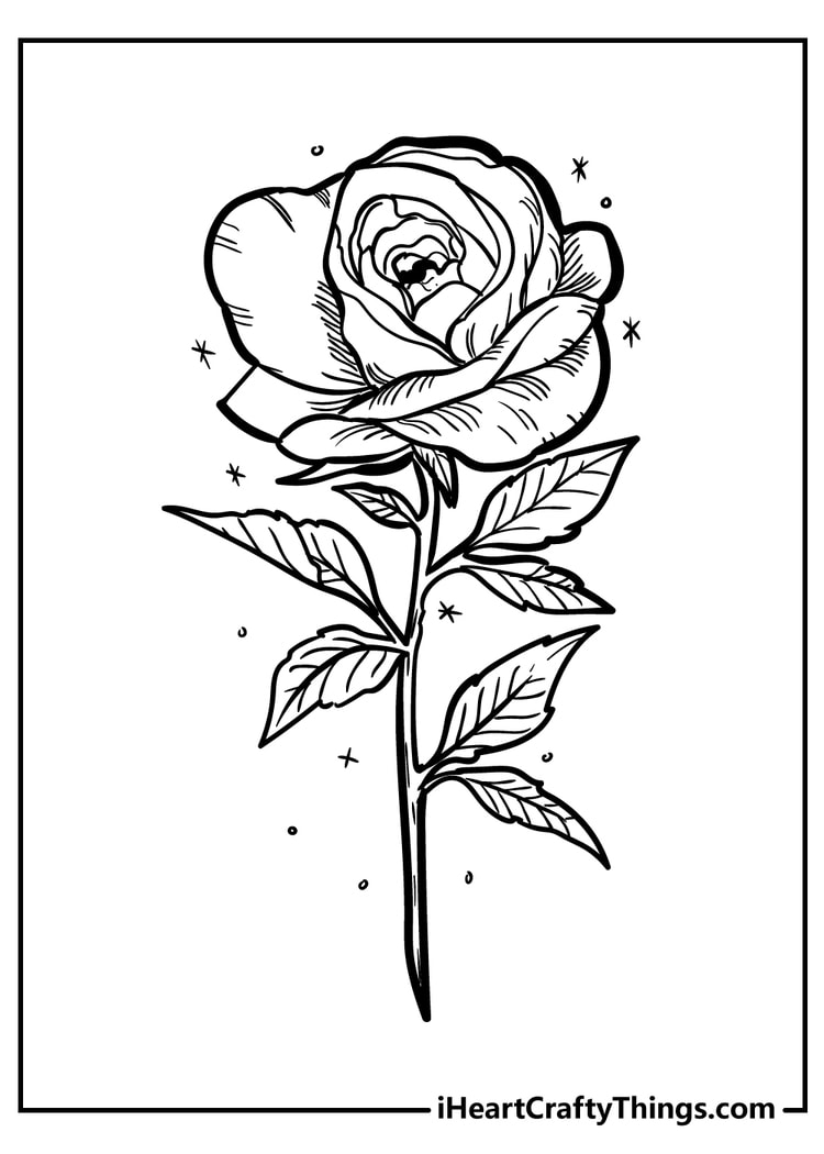Rose Coloring Pages   Original And 18 Free 18