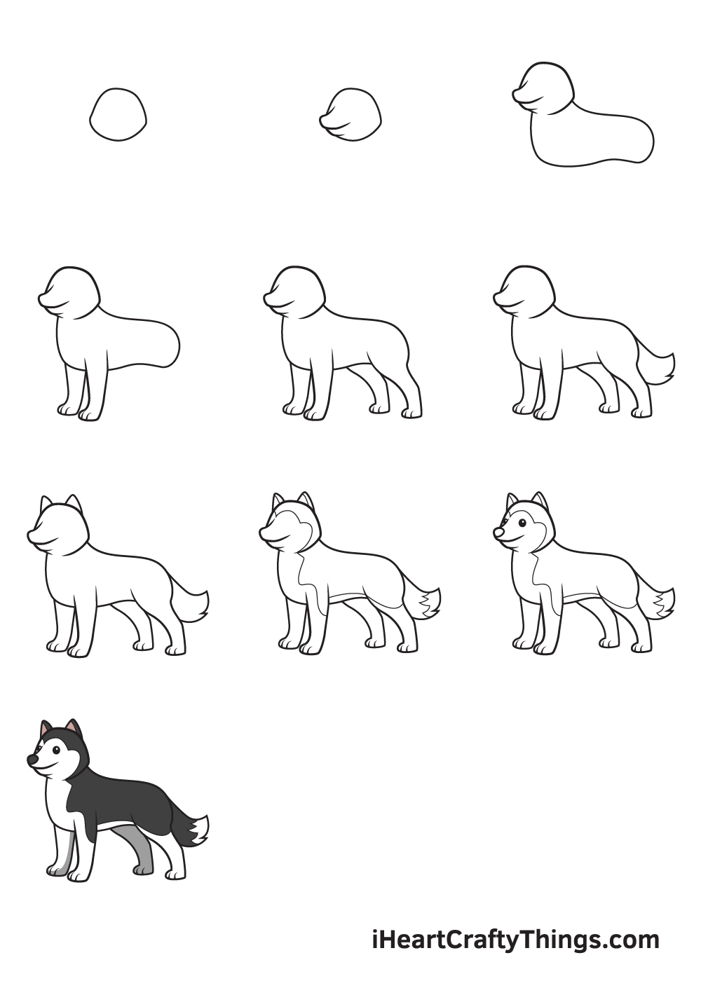 drawing husky in 9 steps
