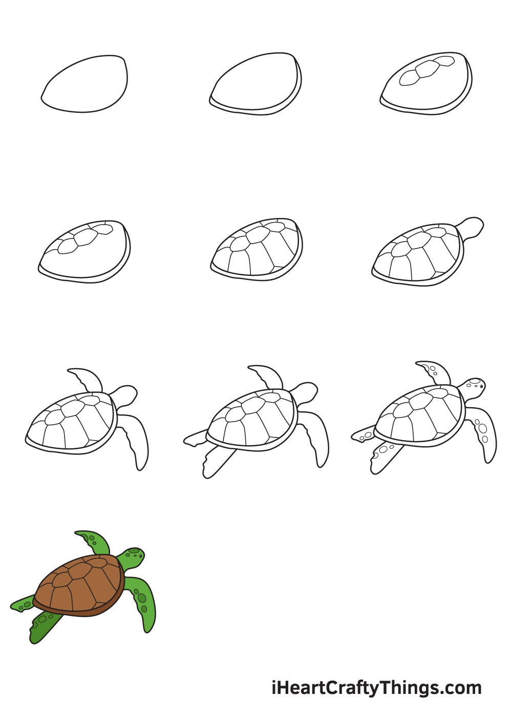 Drawing Sea Turtle in 9 Easy Steps