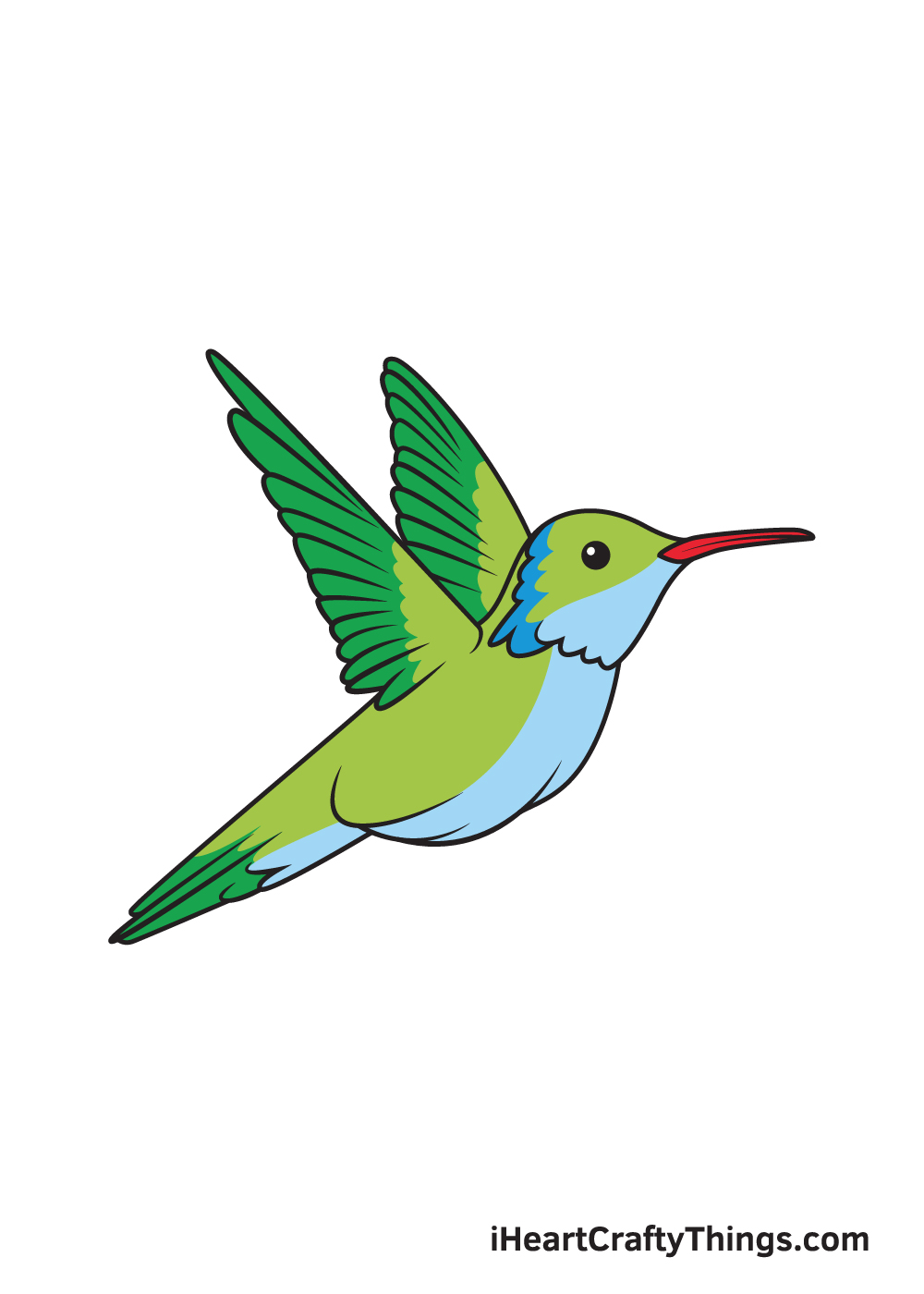 hummingbird drawing 9 steps