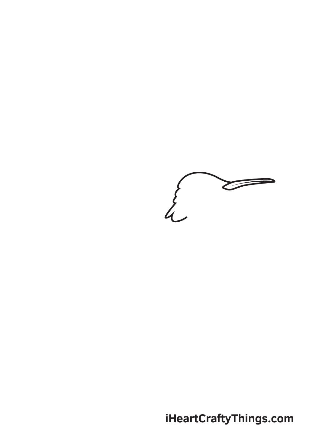 hummingbird drawing step 2