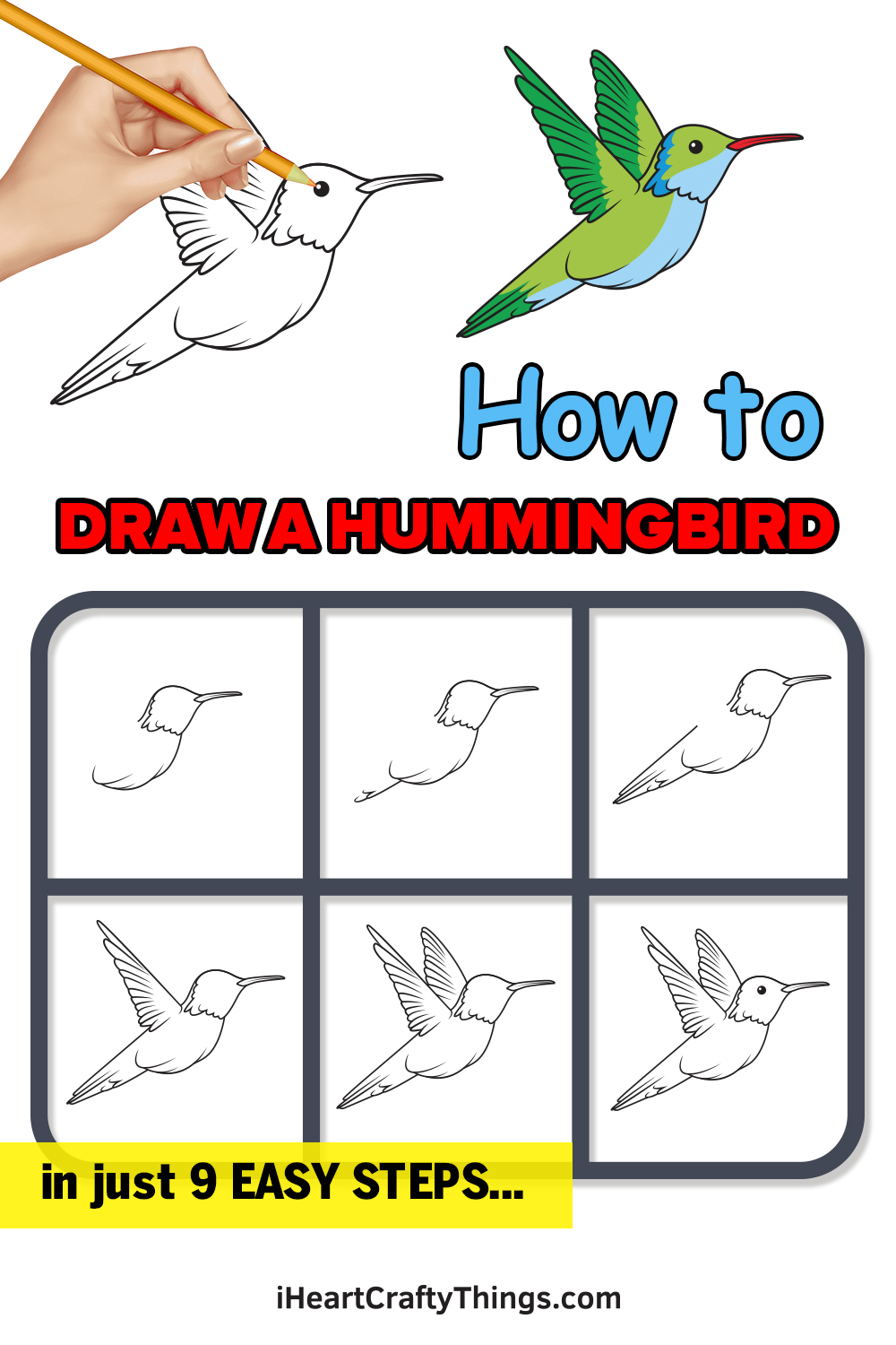 how to draw a hummingbird in 9 easy steps