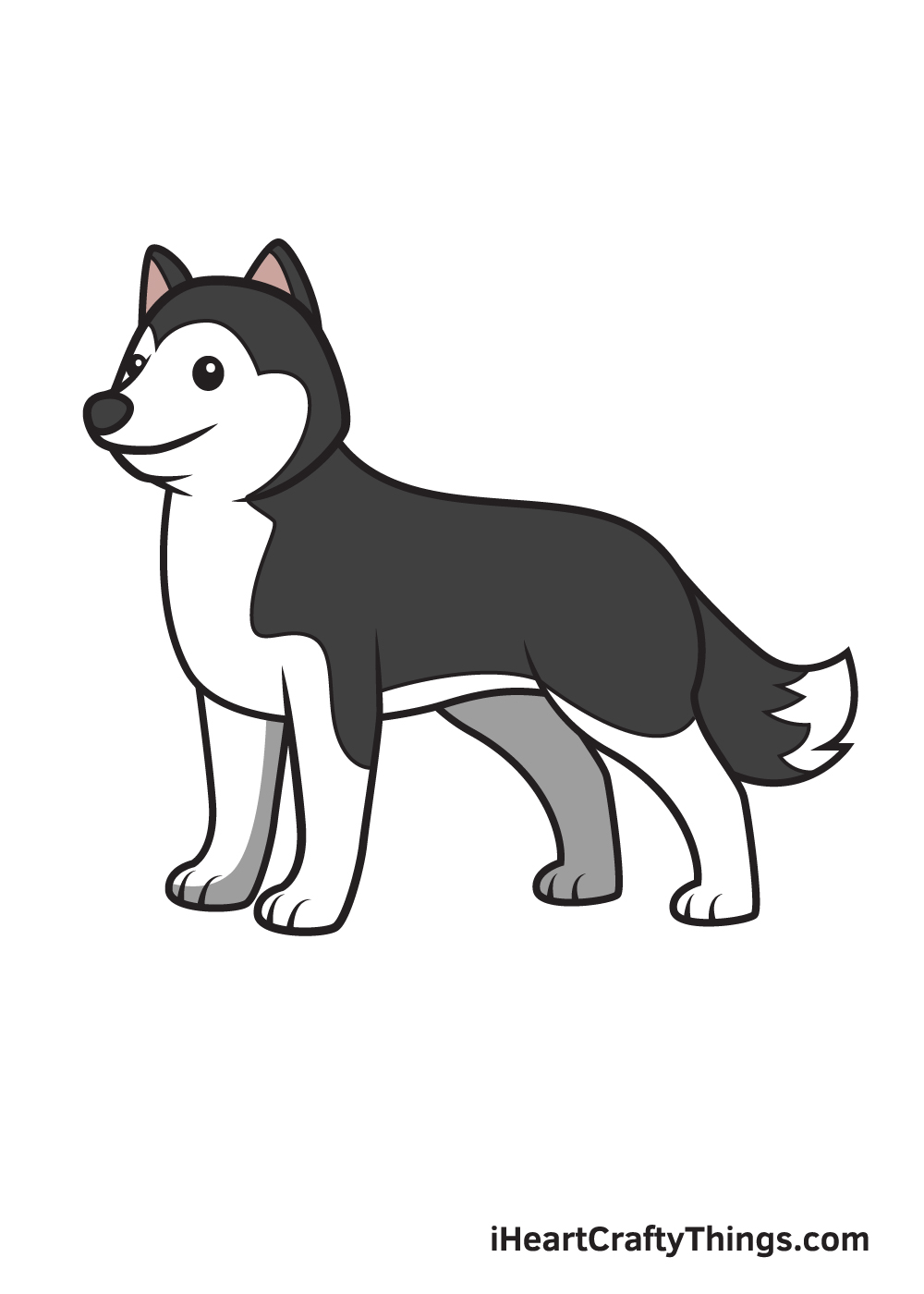 husky drawing 9 steps