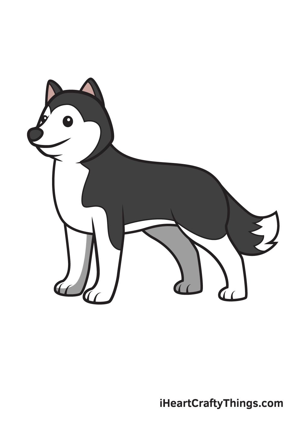 husky drawing 9 steps