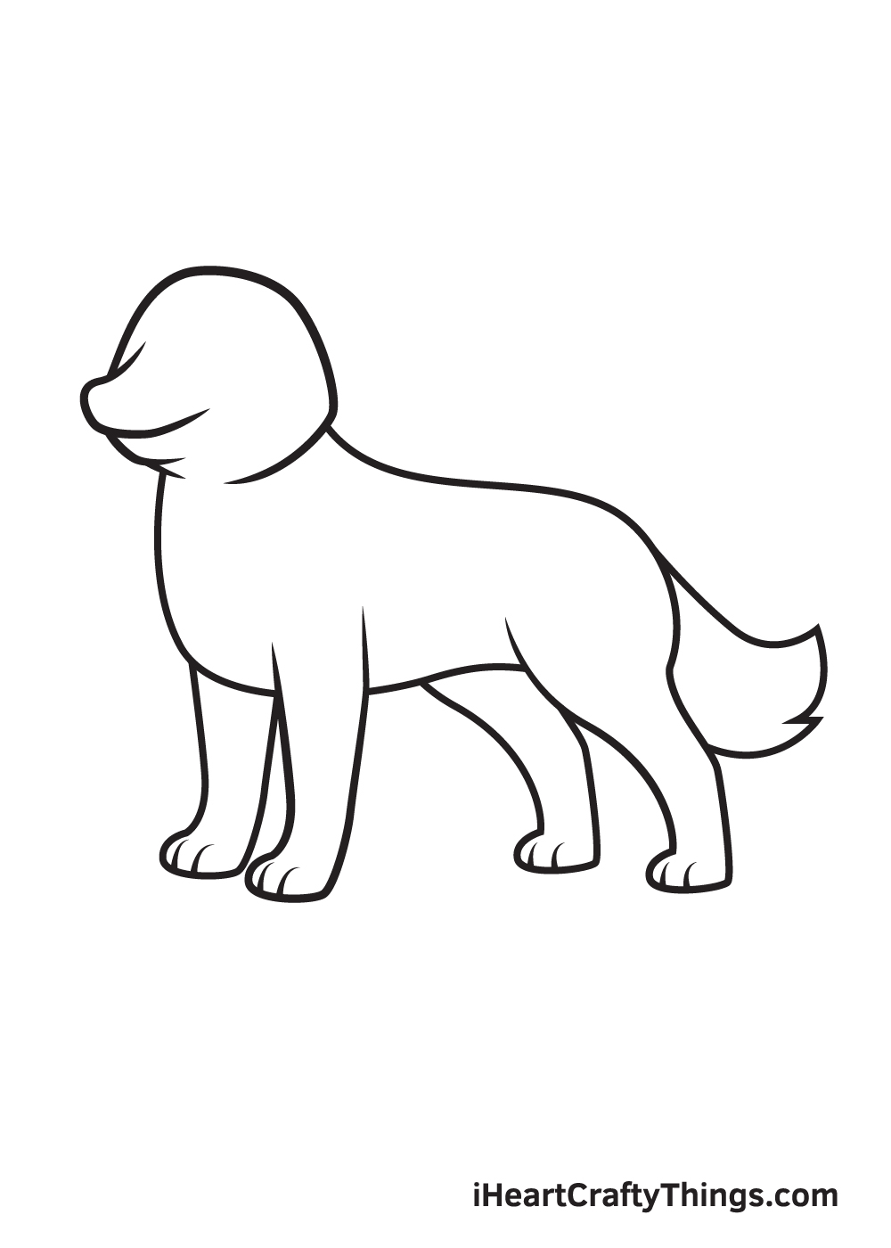 husky drawing step 6