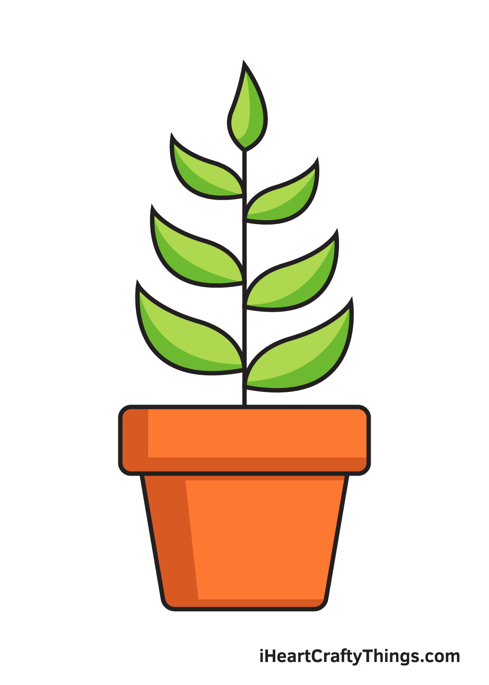 Plant Drawing – 9 Steps