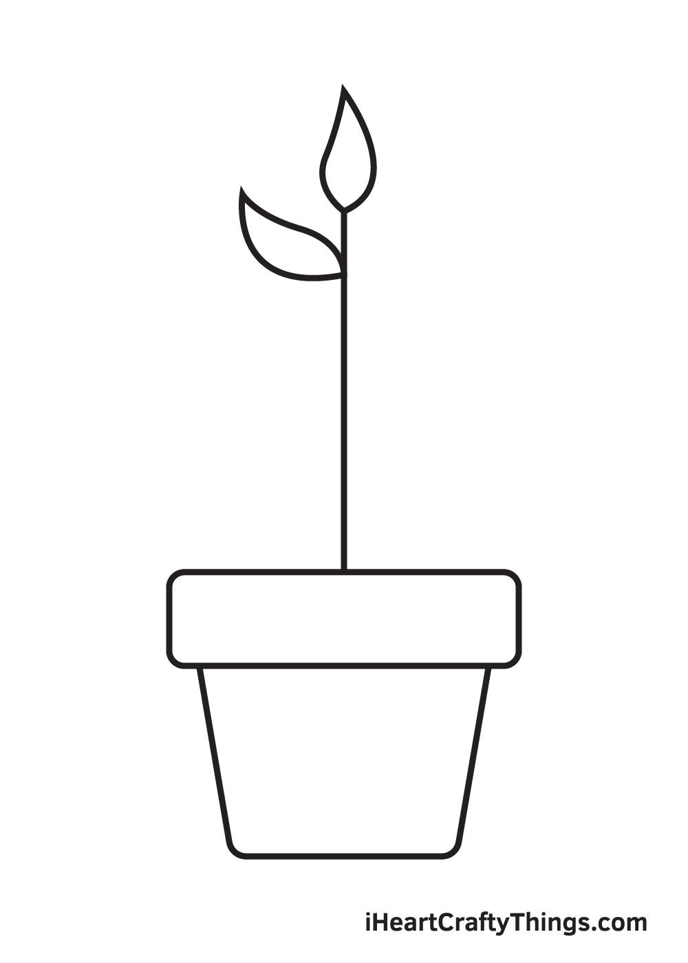 Bản vẽ thực vật - Bước 4