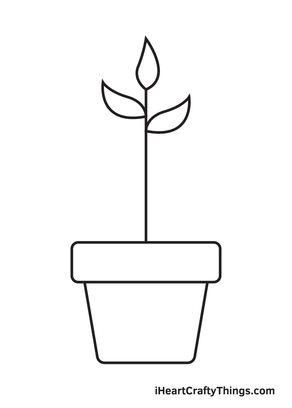 Plant Drawing – Step 5