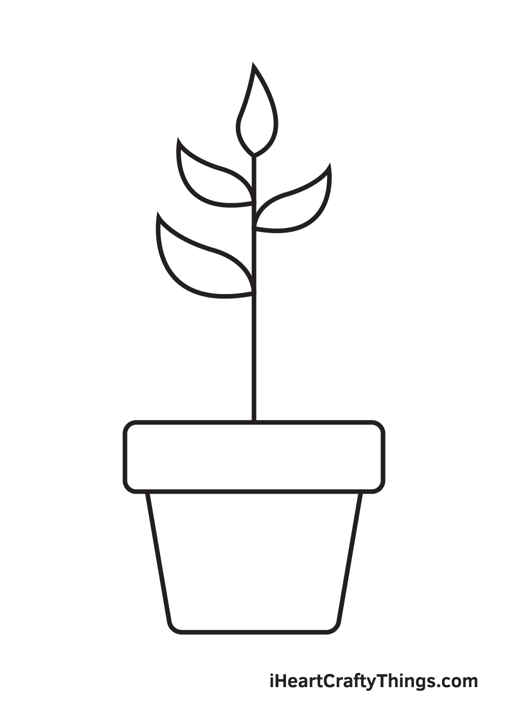 Plant Drawing – Step 6