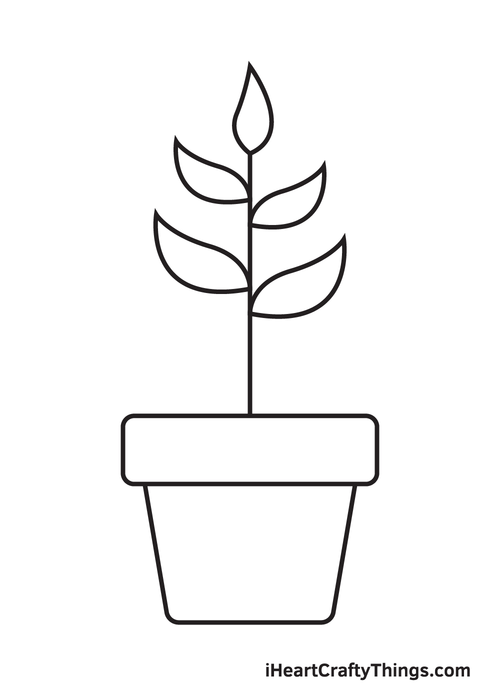Plant Drawing – Step 7