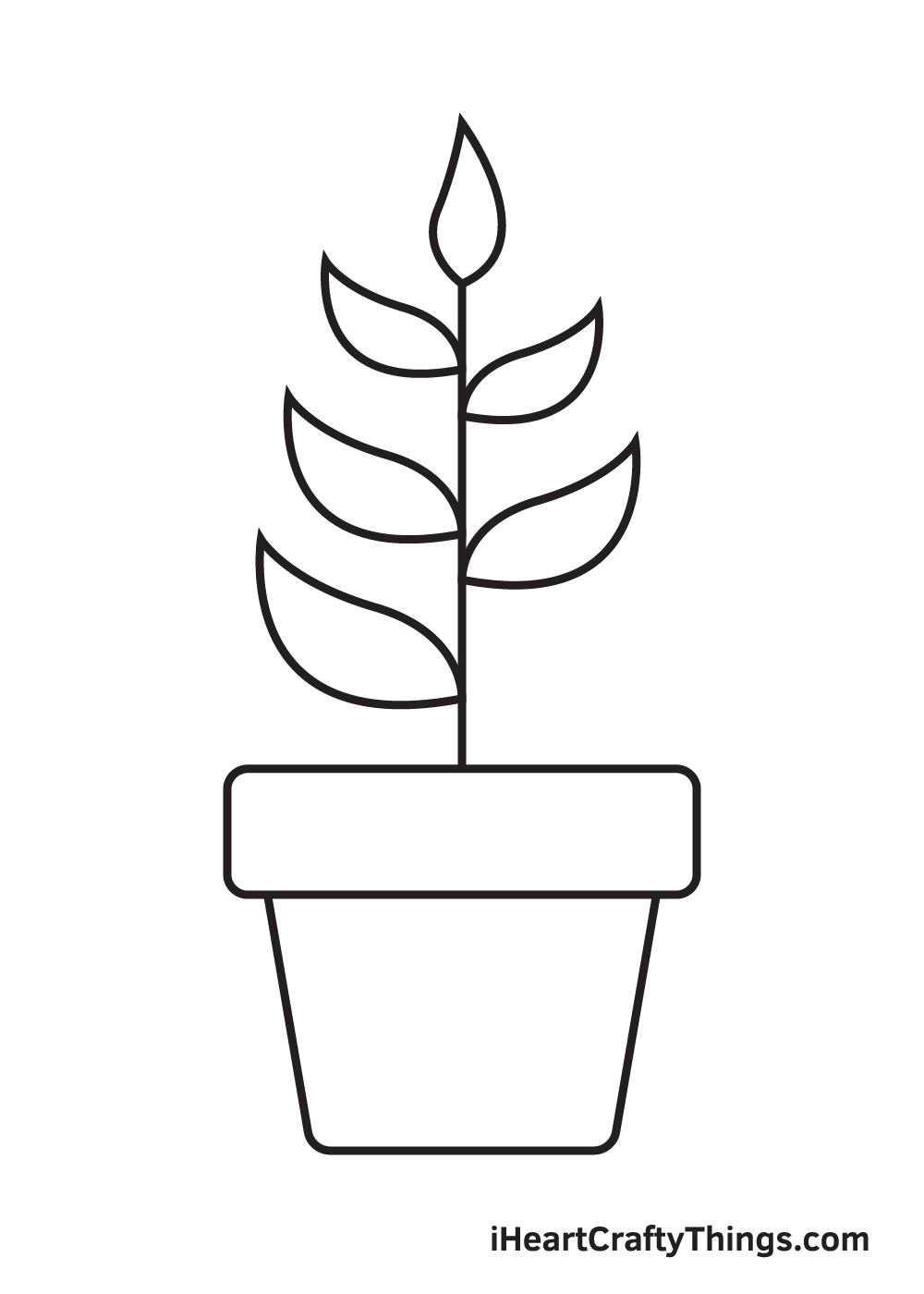 Plant Drawing – Step 8