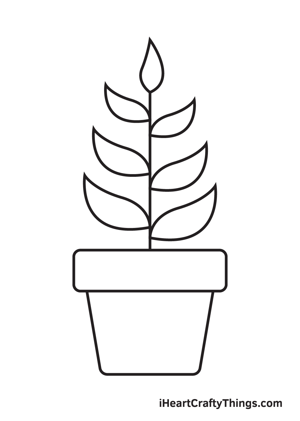 Plant Drawing – Step 9