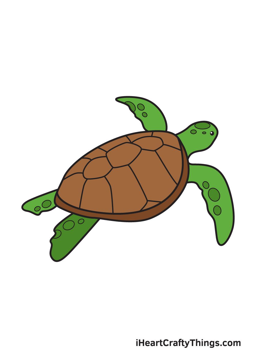Sea Turtle Drawing – 9 Steps