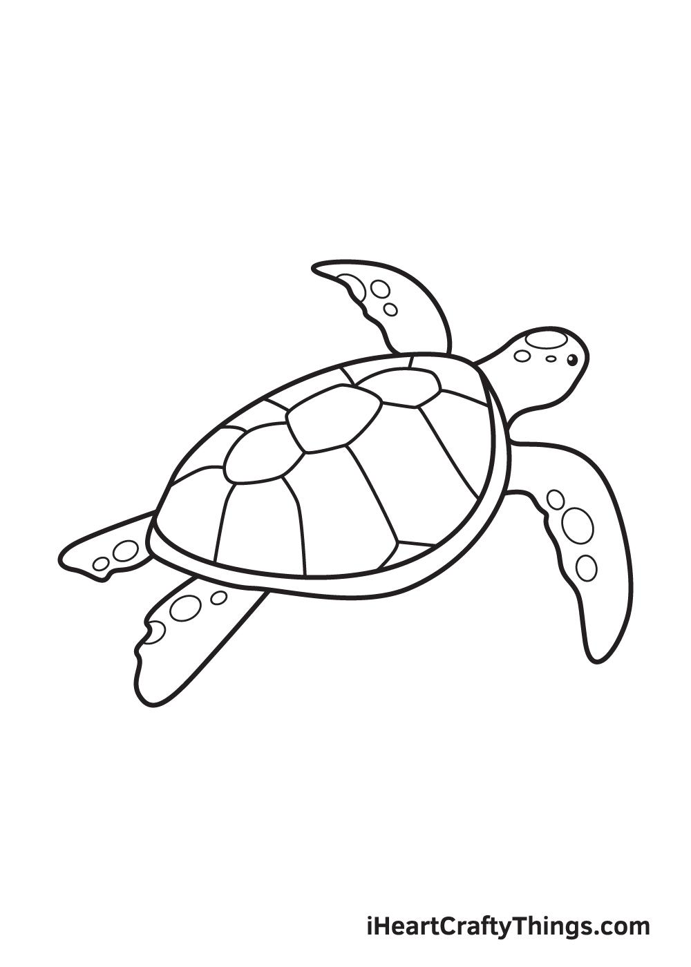 Sea Turtle Drawing – Step 9