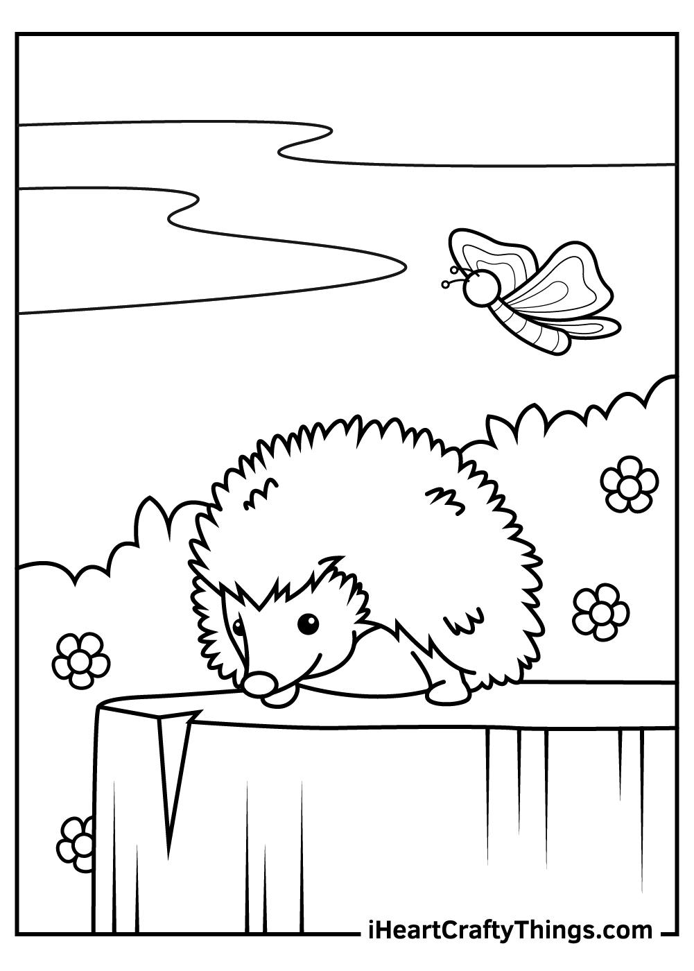 baby hedgehog coloring pages free printable